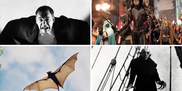 Pipistrelli, vampiri e paurose leggende: Halloween è in arrivo!