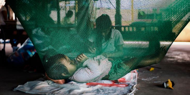 Zanzare killer: i progressi nella lotta contro la malaria