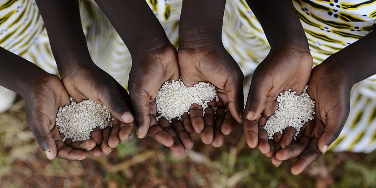 Agenda 2030 - Goal 2: Sconfiggere la fame