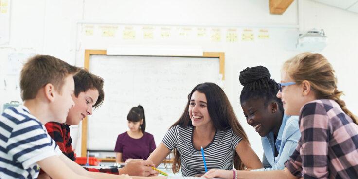 Come organizziamo la collaborazione fra pari nell'ora di matematica? I gruppi collaborativi